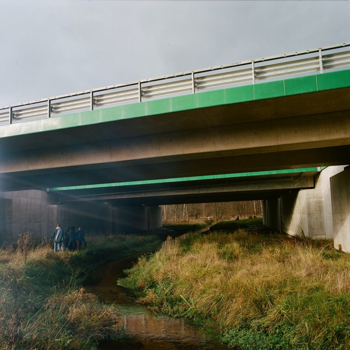 A walk and talk with Emilia Skłucka on the wildlife crossings over and below the expressway S8, near Warsaw. Photo Simone De Iacobis, 2021