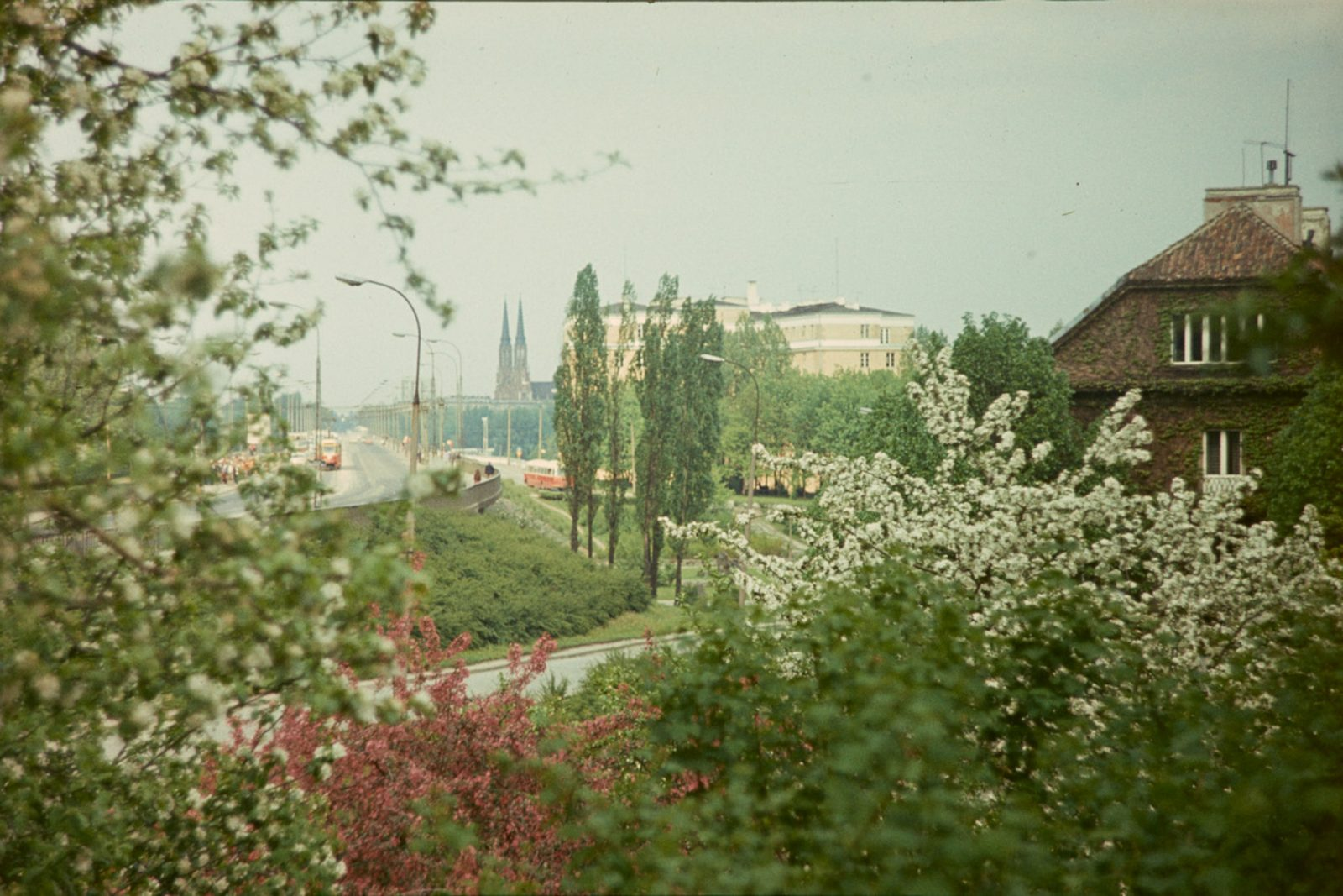 W-Z Route from Nowy Zjazd St. Pear and apple trees blooming in Poland's national colours, photo Tomasz Smoliński, 1970, author's collection